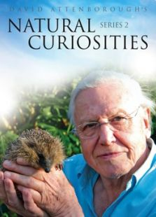 BBC:大卫·爱登堡的自然奇趣